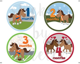 Month by Month Baby Boy Stickers - Horse / Denver Broncos Theme