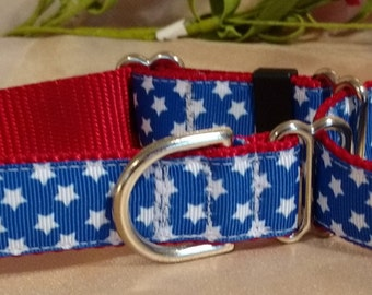 "Red White and Blue 1"" Width Adjustable Martingale Dog Collar"