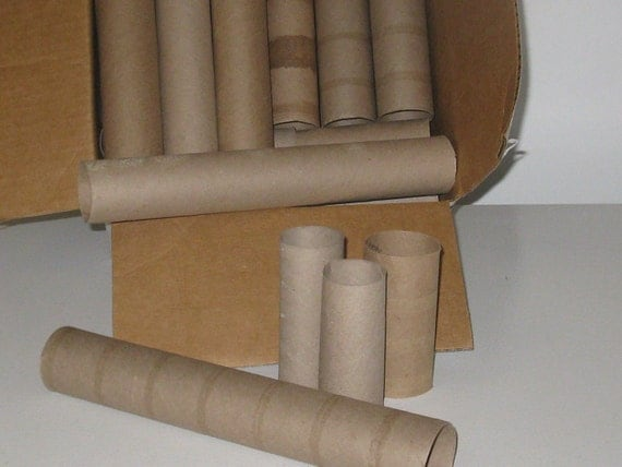 Cardboard tubes paper towel rolls toilet tissue rolls diy for Recycling toilet paper tubes