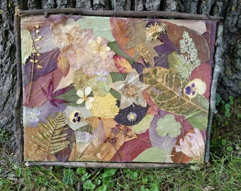 Nature Collage on canvas