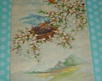 Vintage Gibson Easter Postcard With Bluebirds and Nest