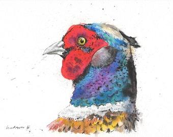 Pheasant Stare - Daily Bird #61 - Original pen & ink drawing, watercolour painting - A4 gift watercolor, pheasants, Birds, farm bird, grouse
