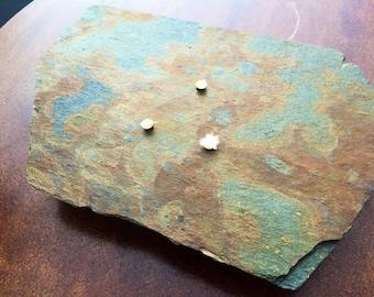 Stone Oil Candle - Slate