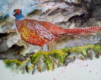 Pheasant original watercolour painting.