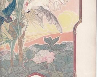 """Art Nouveau A/S Seguy Tropical Scene Birds,Flowersd Trees,1911 Print Paris,10.5"""" X 14.5"""""""
