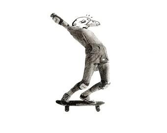 Sea Gal on Wheels I, Illustration Digital Print A4 or A3 of a skateboarding sea gull