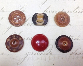 6 Small Antique Vegetable Ivory Buttons 17 mm