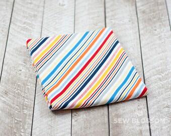Play Ball 2 Stripes MULTI Diagonal Stripes Print Fabric by Kelly Panacci & Riley Blake Designs C5136