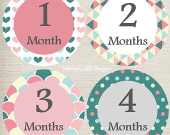 Monthly Baby Stickers Girl, Milestone Stickers, Month Stickers, Baby Month Stickers, Baby Stickers #1
