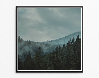 Square Prints, Wilderness Art, Forest Print, Forest Wall Art, Trees, Modern Photography, Tree Print, Forest Art, Rustic Decor, Forest Photo