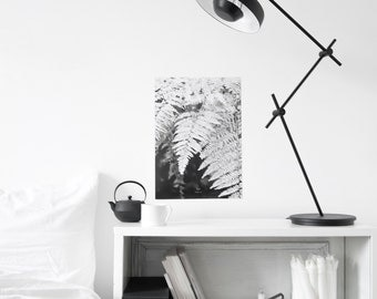 let s dive into FERN  - A3 Artprint - Poster