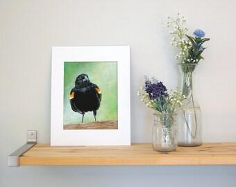 11x14 Blackbird Wall Art with White Mat - Ready to Frame Bird Print from Original Acrylic Painting
