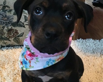 Pink floral pet bandana for female dog or cat puppy or kitten in size extra small small/medium large/extra large