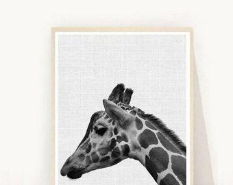 Giraffe Print, Instant Download, Giraffe Wall Art, Printable Art, Black And White Art, Animal Print, Home Decor, Wall Decor, Wall Art