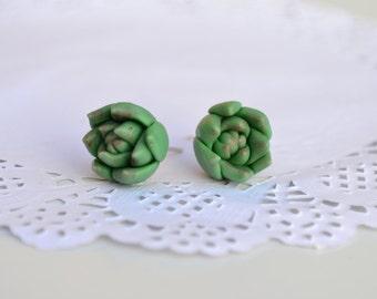 Green Succulent stud Earrings.Succulent studs Jewelry.Rustic studs earrings.Rustic jewelry. Planter stud earrings