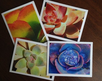 Drought Tollerant Any Occasion Greeting Cards - Stationary (set of 4)
