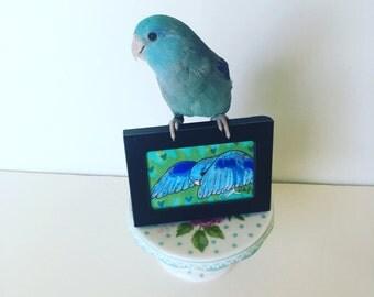Fancy Birdie framed mini original art