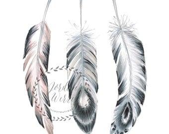 Three Little Feathers (print)