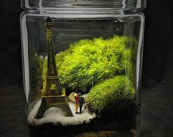 Paris Terrarium // Moss Terrarium // Paris Gift // Couple Terrarium // Eiffel Tower