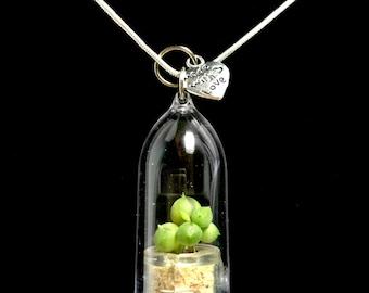 Wearable Succulent Necklace / Mini Succulent Terrarium Necklace / Miniature Terrarium / Nature Jewelry Necklace