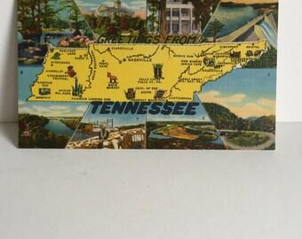 Vintage Tennesee Postcard