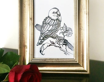 Original Parrot Drawing, Bird Illustration, Framed Drawing, Pen & Ink, Limited Edition by ENNA