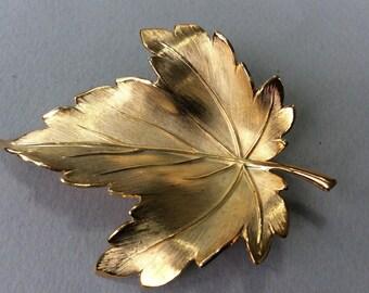 Giovanni Gold Tone Leaf Brooch/Pin