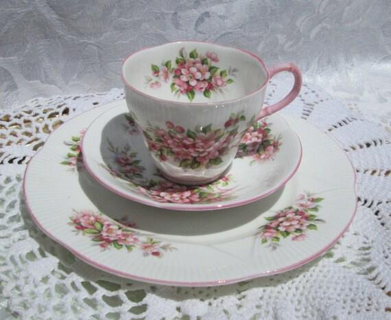 Royal Albert Blossom Time Series Apple Blossom Pink Tea Cup