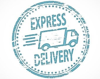 Express delivery / express shipping worldwide.