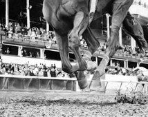 Horse Racing Kentucky Derby Triple Crown Giclée Canvas Print in 4 Sizes by World-Renowned Black & White Sports Artist Dave Hobrecht