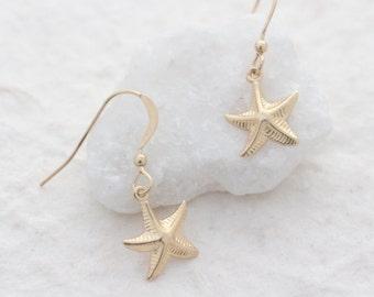 Gold starfish earrings. gold filled starfish /  star fish earrings /  gold filled earrings /  gold earrings / starfish jewelery