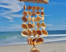 Driftwood and Orange Ark Clam Wind Chime || Beach Decor || North Carolina Seashells