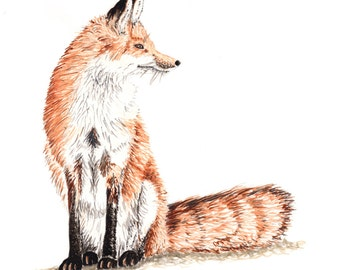 Sitting Fox recycled greetings card