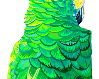 Sultry Parrot limited edition signed giclee fine art print