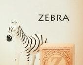 zebra photo, letter z print, nursery art, nursery decor, childs room decor, child room art, letter art, alphabet photo, alphabet art