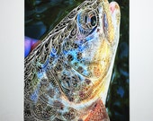 Limited Edition Wild Brown Trout Zentangle Gicleé Print 8.5x11 Conservation Matted to 11x14