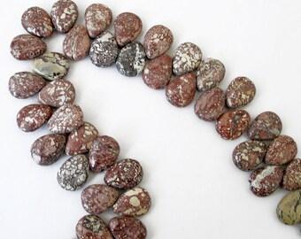 Wild Horse Magnesite Appaloosa Jasper Stone Briolette Teardrop Beads For Jewelry Making