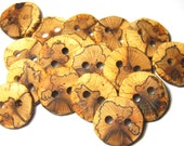 Handmade Wooden Buttons, Wood Buttons, Natural Wood Buttons, Spalted Oak Tree Branch Buttons, Set of 16, 1 1/4 Inches