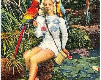 Vintage Florida Postcard - A Blonde Beauty at Parrot Jungle (Unused)