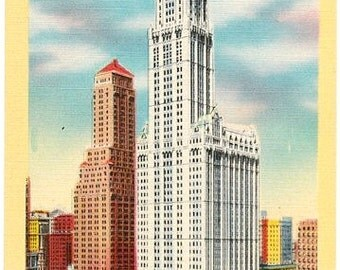 Vintage New York City Postcard - Woolworth Building and City Hall Park (Unused)