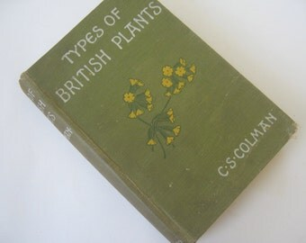 Vintage Book Types of British Plants Colman 1909 Floral Plates