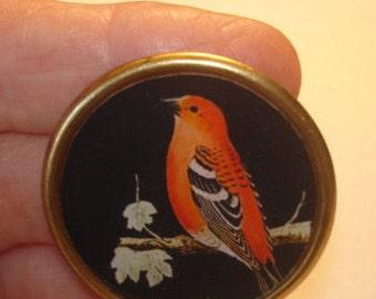 Red Bird  Animal Brooch KL Design