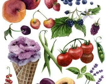 Fine Art Print of Original Watercolor Painting - Summer Kitchen