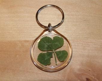 Small Real Four Leaf Clover Key Chain Lucky Charm Keychain