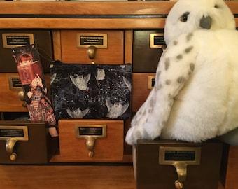Hedwig Owl/Harry Potter cosmetic bag