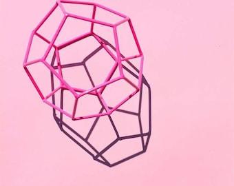 Pink On Pink Digital Print