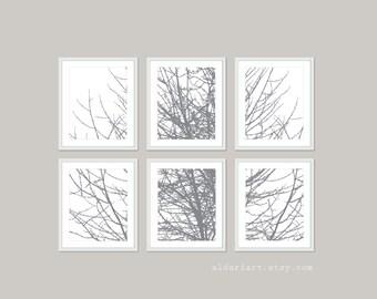 Modern Tree Branches Art Prints - Set of Six - Slate Grey Winter Tree Wall Art - Contemporary Branches Art - Gallery Wall - Aldari Art