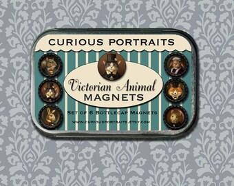 Animal Portrait Magnets - Victorian Animal Magnet Set - Refrigerator Magnets