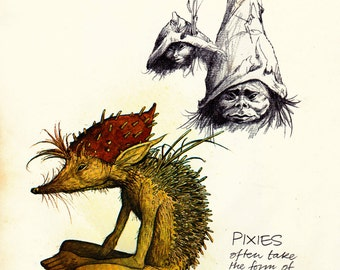 vintage book page print to frame - Brian Froud pixie print - fantasy illustration - fairy art - Faeries 1979