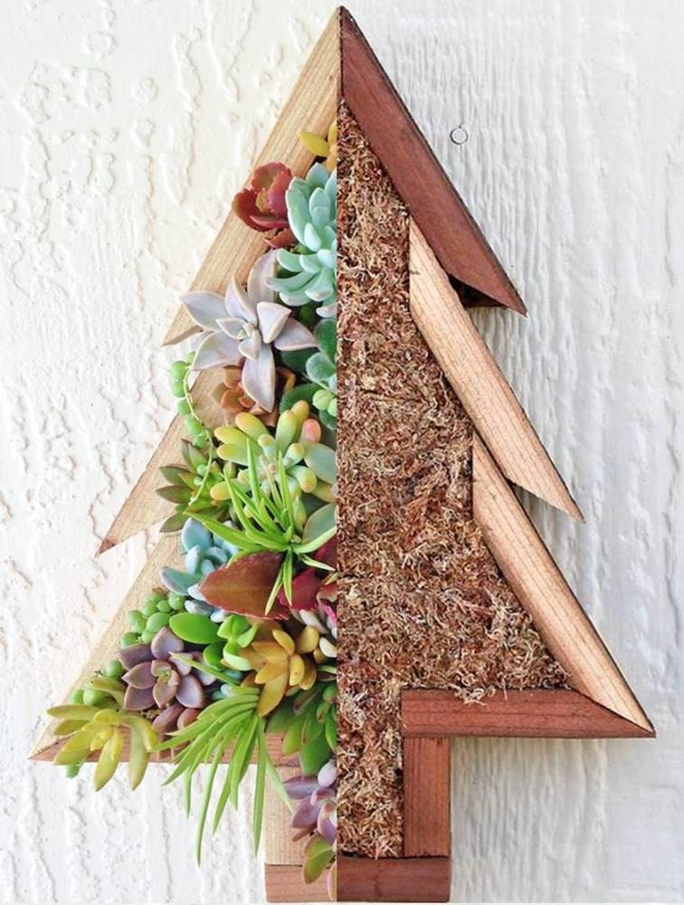 Diy Christmas Tree Succulent Vertical Planter Wall Or Table